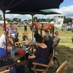 Image for the Tweet beginning: Ideal weather @tendringshow a great