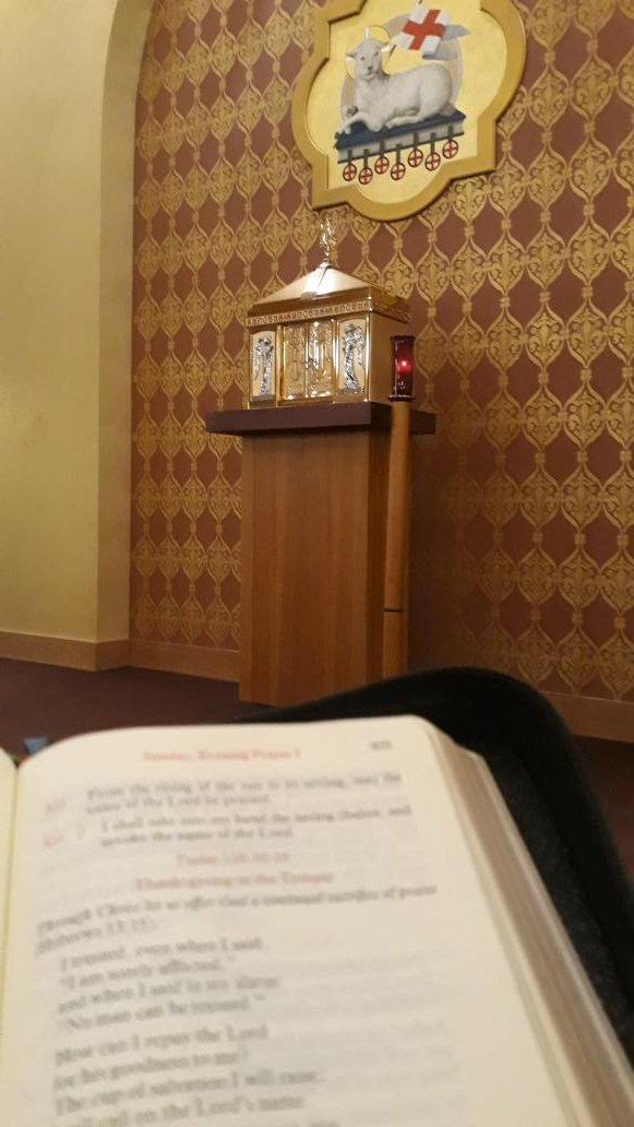 #BreviaryViews Vespers at the celebrant's chair at Our Lady of Lourdes <br>http://pic.twitter.com/3ARUpAF279