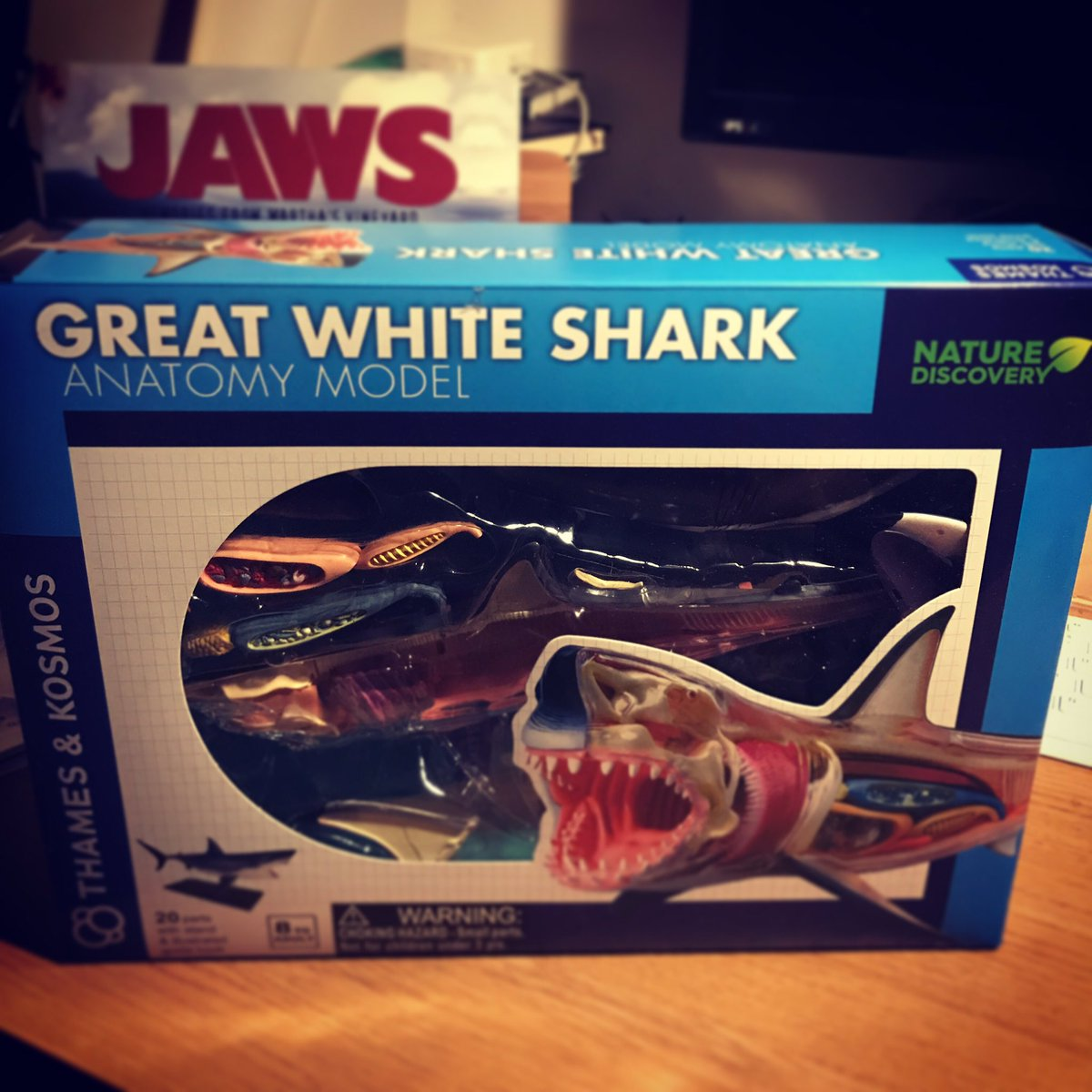 Who else was inspired by JAWS to learn about sharks?  #jaws #learn #study #lovesharks pic.twitter.com/uw1CESoyiS