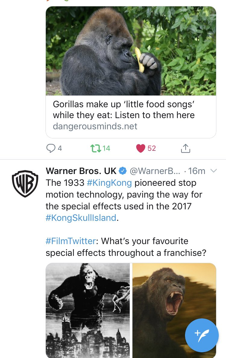 Love it when things like this happen! What d'you think Kong sings?  🤔😂🦍 #Kong #KingKong #SkullIsland #Gorillas #Gorilla #Wildlife #Songs #Music #Film #Greenpeace
