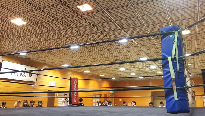 2019.7.14 OSW「第3回 激突!覆面レスラー世界一決定1Dayトーナメント」(愛知・名古屋市北スポーツセンター) #osw_fan #OSW #覆面世界一
