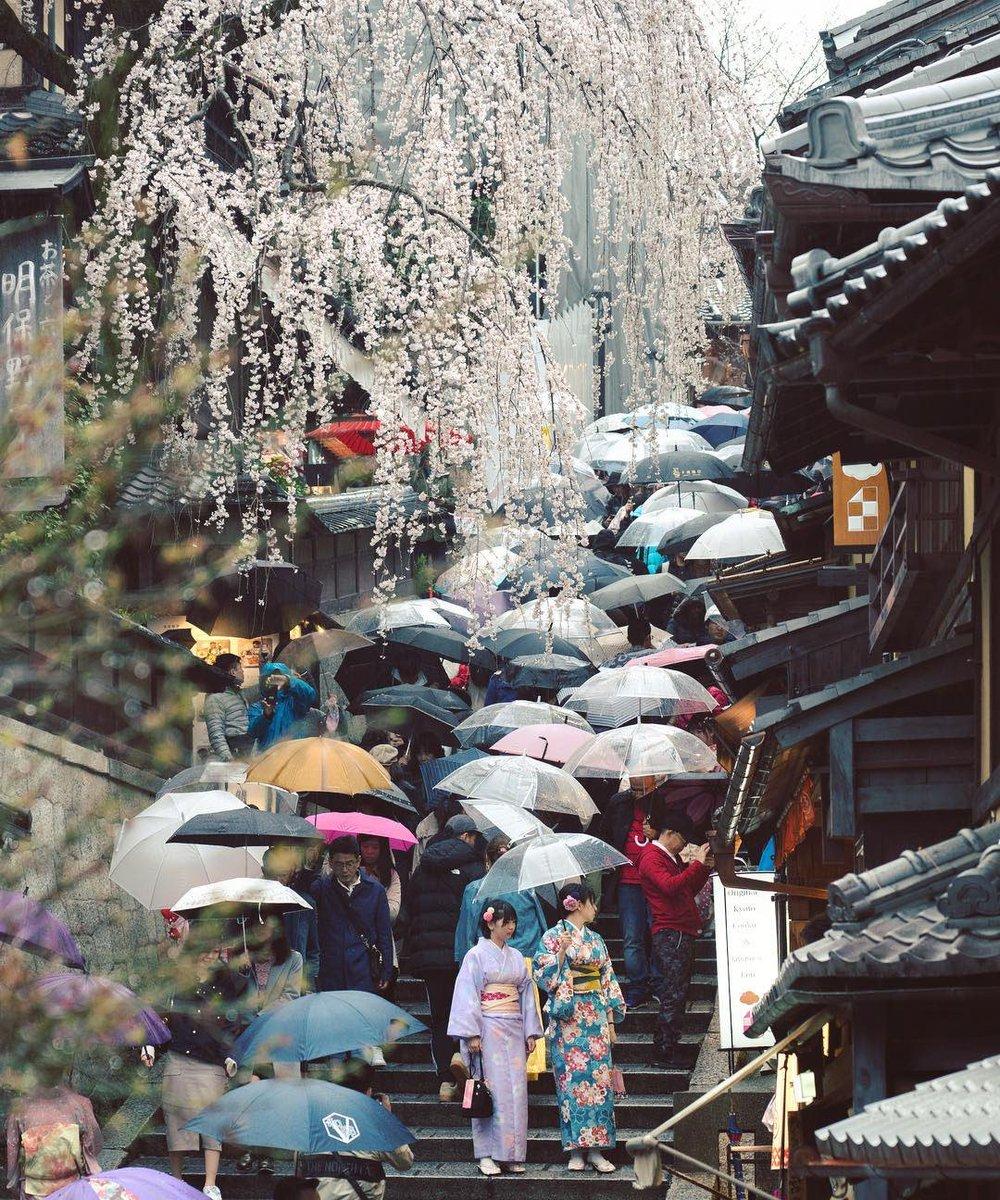 #HelloFrom Kyoto, Japan. ☔https://www.instagram.com/p/Bz5yE7QgJ7g/?igshid=urbxlkjoc3ay…