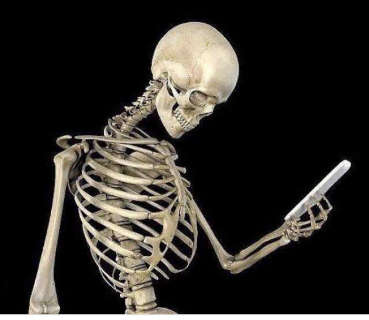 скелет он ждал картинка получила
