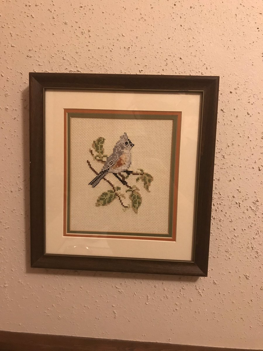 Visiting my grandmother, I found lots of awesome cross-stitch birds. Needless to say I told her I wanted them.