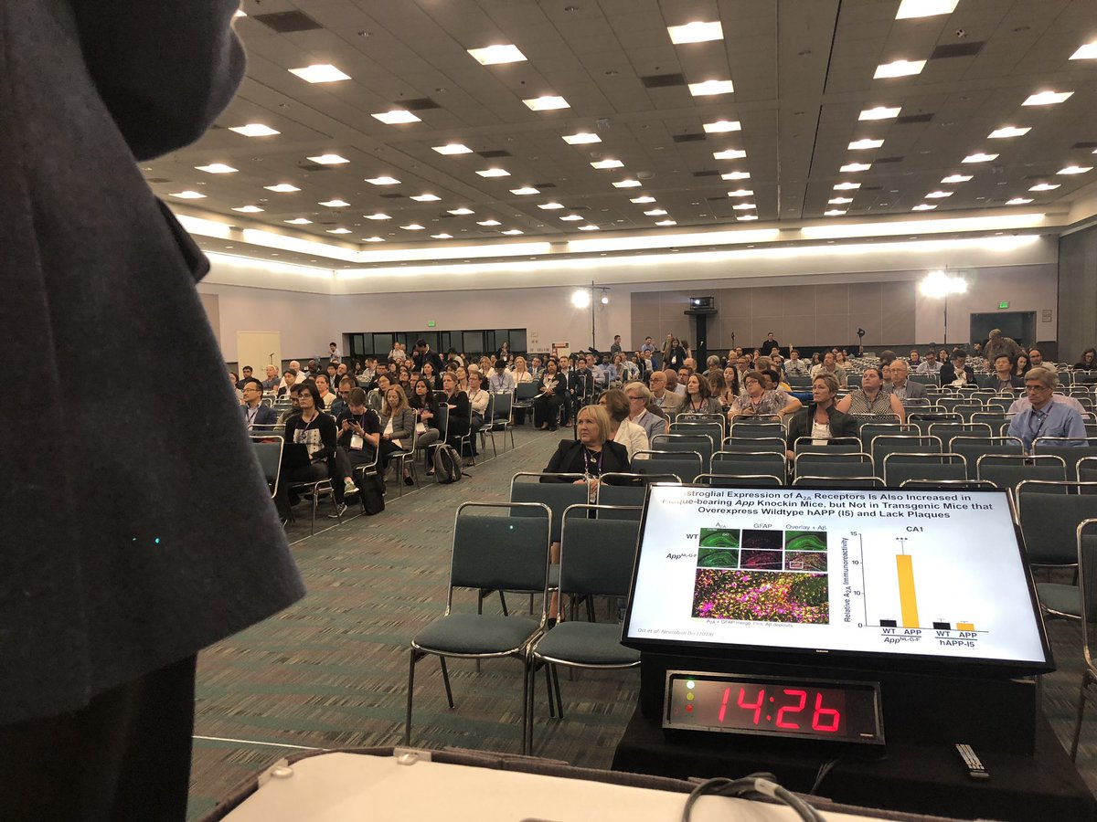 It's a full house for the #AAIC19 session chaired by our @wilcocklab on glia-neuronal interaction and dysregulation in #Alzheimers @alzassociation <br>http://pic.twitter.com/sFnJ0RzO0p