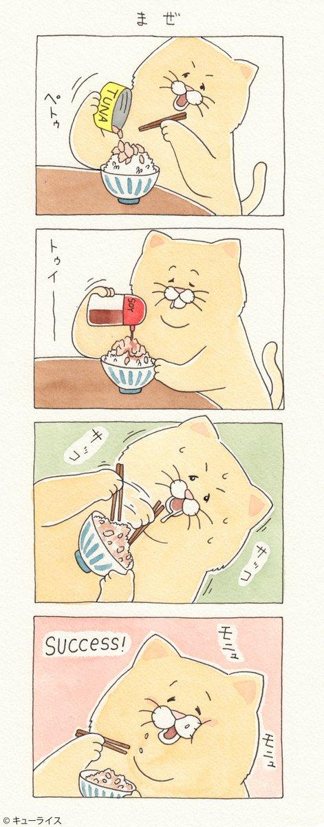 4コマ漫画ネコノヒー「まぜ」/Tuna and rice    単行本「ネコノヒー3」発売中!→ グッズ付きDXパック→