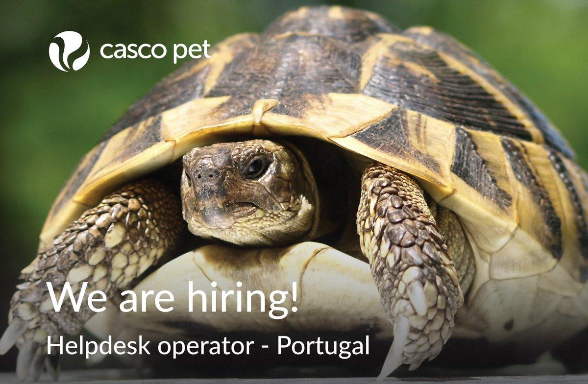 CASCO Pet (@CascoPet)   Twitter