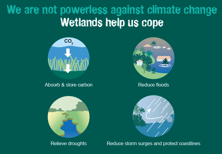 #MotivationMonday = Wetlands why should I care?  Wetlands are a natural solution to our #ClimateChange problem. #KeepWetlands<br>http://pic.twitter.com/ieQ8y7hb78