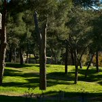Image for the Tweet beginning: El @MADRID promueve actividades ambientales