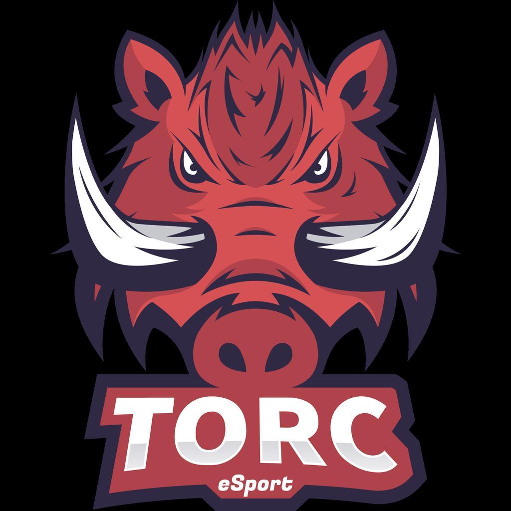 Torc_Esport photo