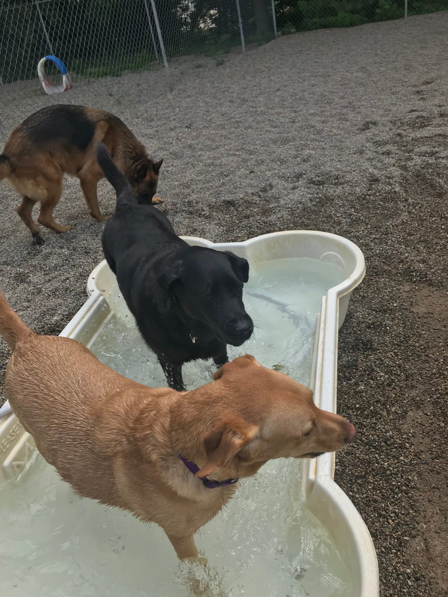 Greta and Clary share the pool