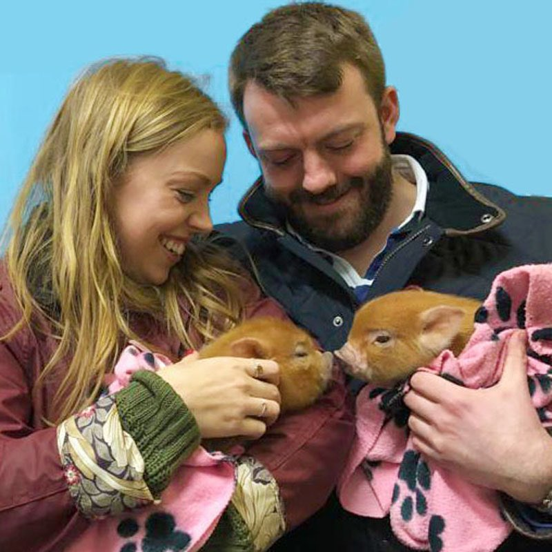 "test Twitter Media - 🐷 This couple just got engaged in the most adorable way at @PennywellFarm !! ""The piglet I was holding had a ribbon and a scroll of paper which said 'Jaymes has something he wants to ask you'! He then got down on one knee and asked me to marry him"" https://t.co/I2xBmRGi6B https://t.co/2qtAnkQ9b3"