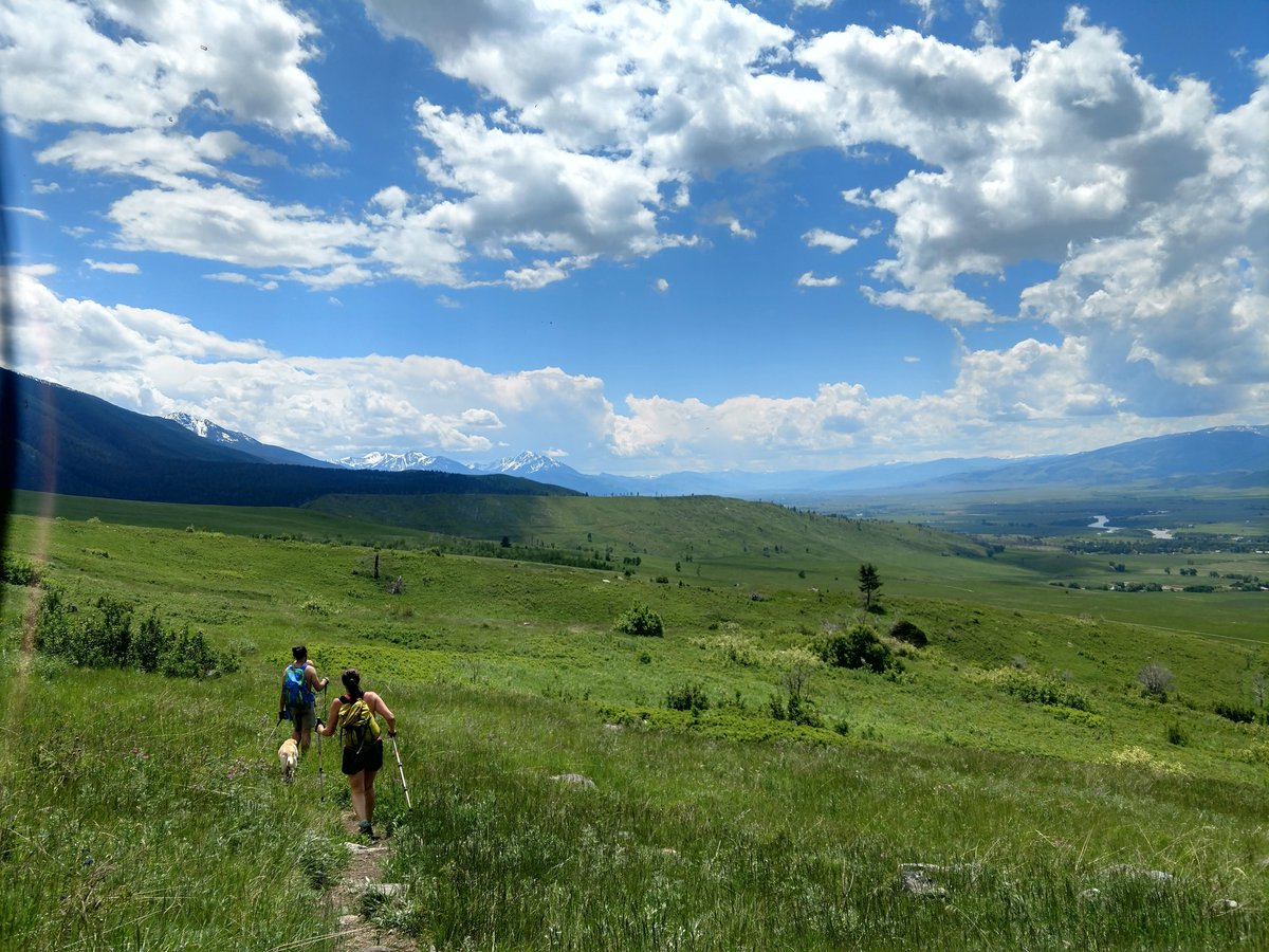 Summers in the Greater Yellowstone Ecosystem 😍 😍 😍  #mygreateryellowstone #hikingadventures #getoutside