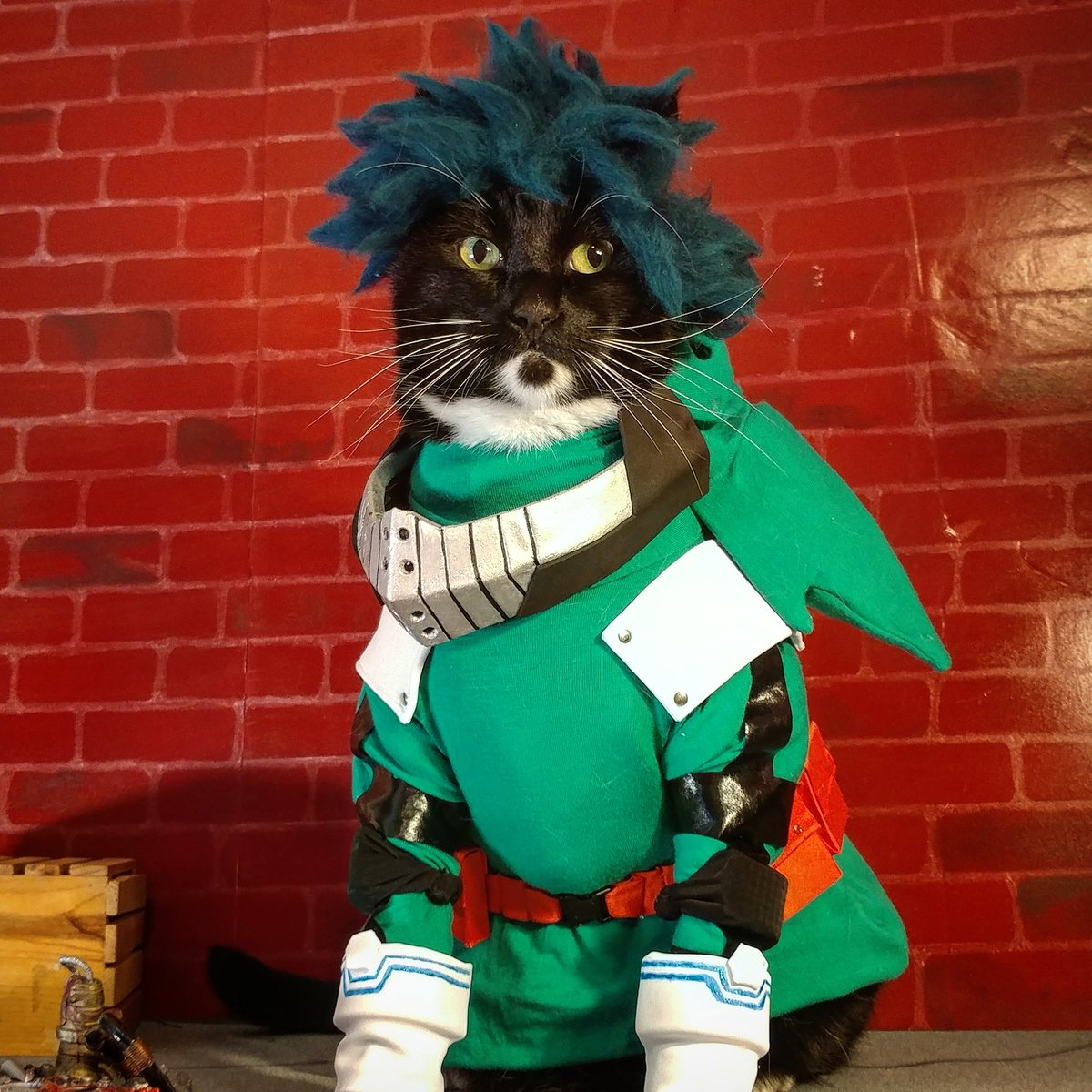 Happiest of Birthday's Deku, from this Meowdoria to you!  #MyHeroAcademia <br>http://pic.twitter.com/Qg6s4pNYmQ
