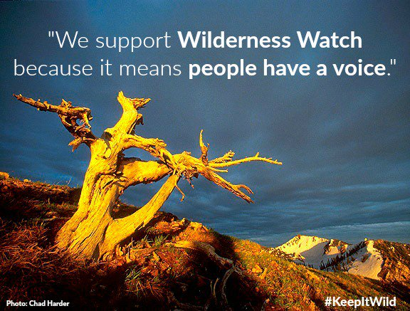 We are America's leading organization dedicated to defending and keeping wild the nation's 110 million-acre National Wilderness Preservation System. Our work is guided by the visionary 1964 Wilderness Act. Learn more about our vision for #Wilderness: http://www.WildernessWatch.org