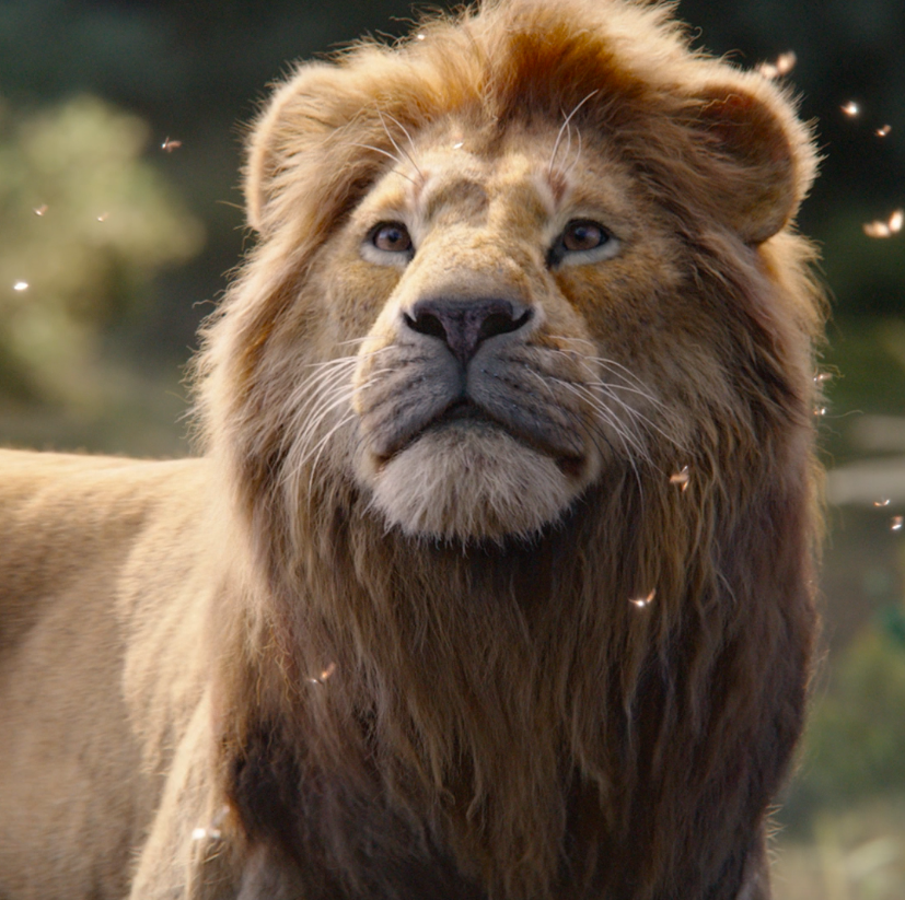 "#TheLionKing, featuring the new song ""Spirit"" by @Beyonce, finally arrives in theatres this Friday."