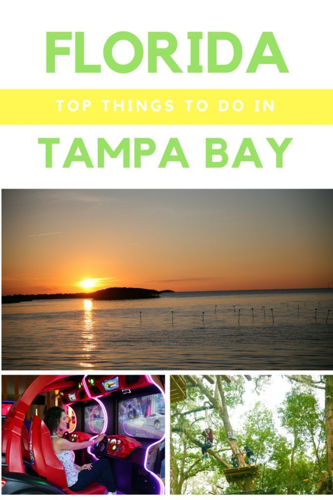 Just Pinned to PINWORTHY: TRAVEL : https://ift.tt/2XeJHT0 #travel #tlpicks #travelblogger #travelguide Things to do in Tampa