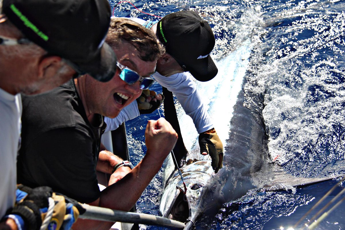 Madeira - Dream Catcher went 2-3 on Blue Marlin.