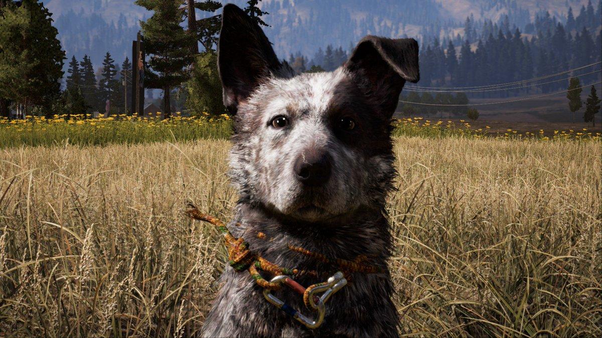 Собаки из игры картинки