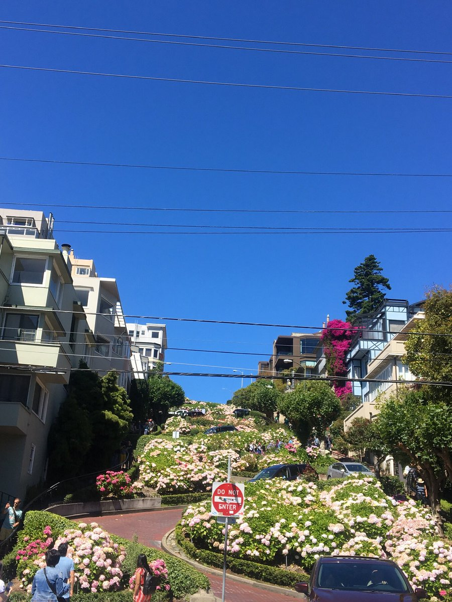 The press about the problems in #SanFrancisco misses the essential truth. From bridge to bridge, bay to ocean, North Beach to China Beach, from natural vistas to lauded landmarks,  it's a splendid city!