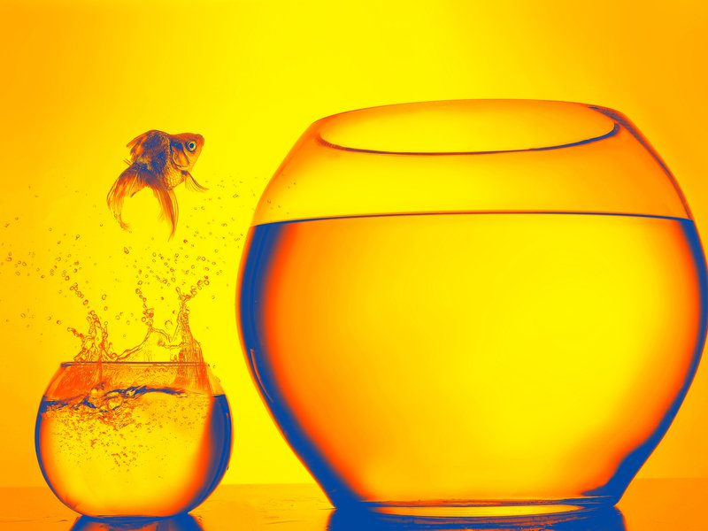 Fishbowl rolls out to brand marketers bit.ly/32s3ReF