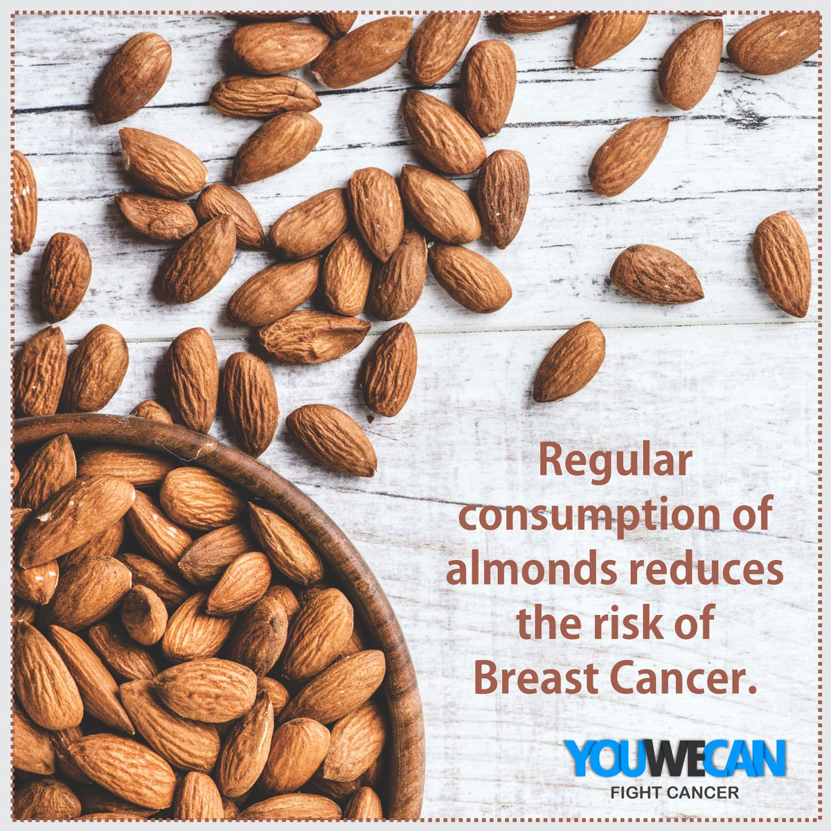 #Almonds are packed with vitamins, minerals, proteins and fibres.Almonds not only reduce the risk of breast cancer but also lowers cholesterol levels.Include 1 ounce or about 20 almonds in your daily #diet !#youwecan #togethwecan #fightcancer@YUVSTRONG12 @hazelkeech