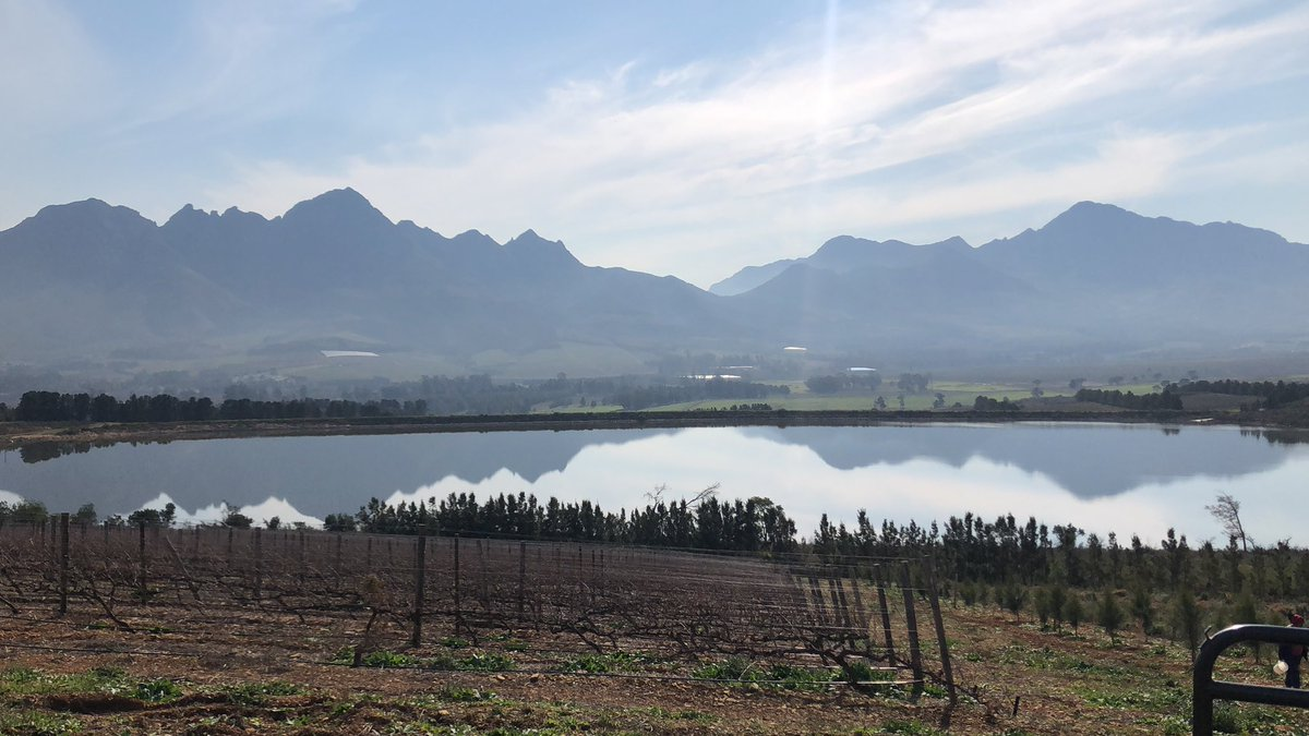 Not many offices in the world have views like this @VergelegenWines #SouthAfrica #winecountry #stellenbosch