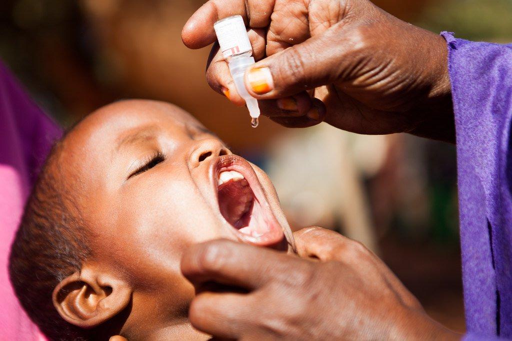 tetanus vaccine ingredients - 1024×683