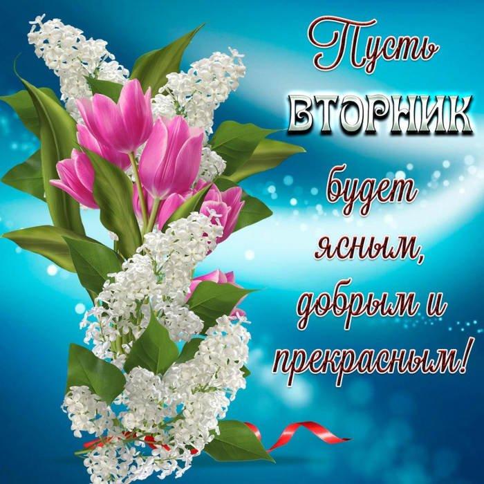 Красивые картинки со вторником, цветами для фотографий