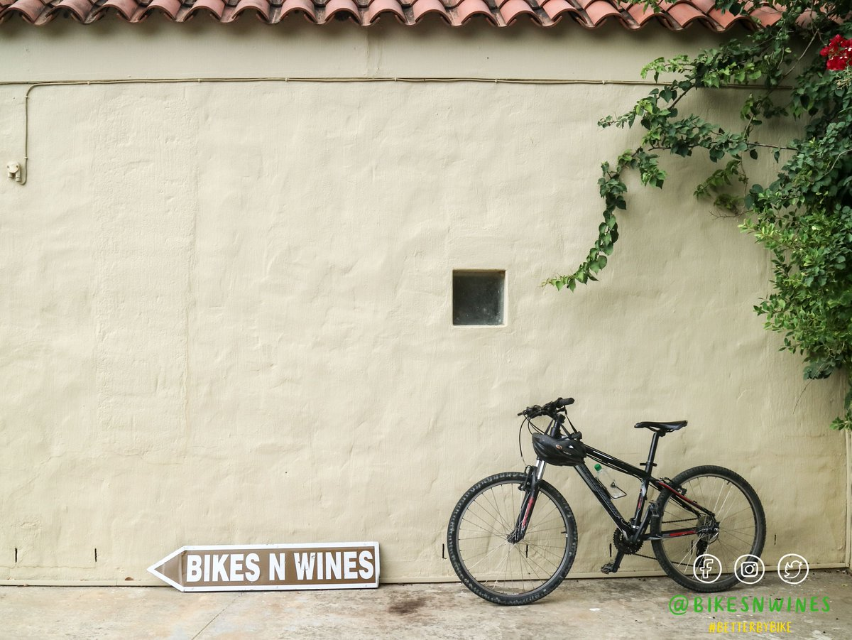 Winelands special with our winter wonder bicycle tour