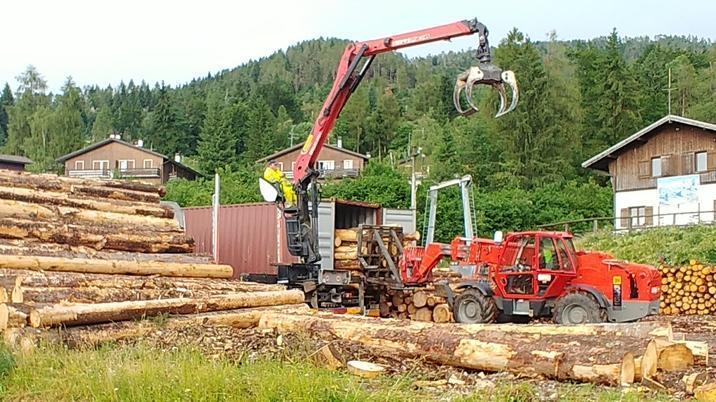 Il viaggio del legno dal Nevegal alla Cina: «Non ...