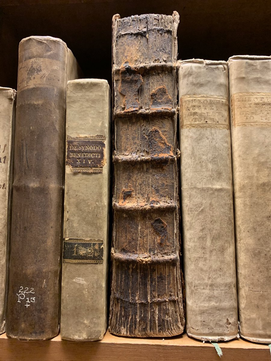ebook Biophysical