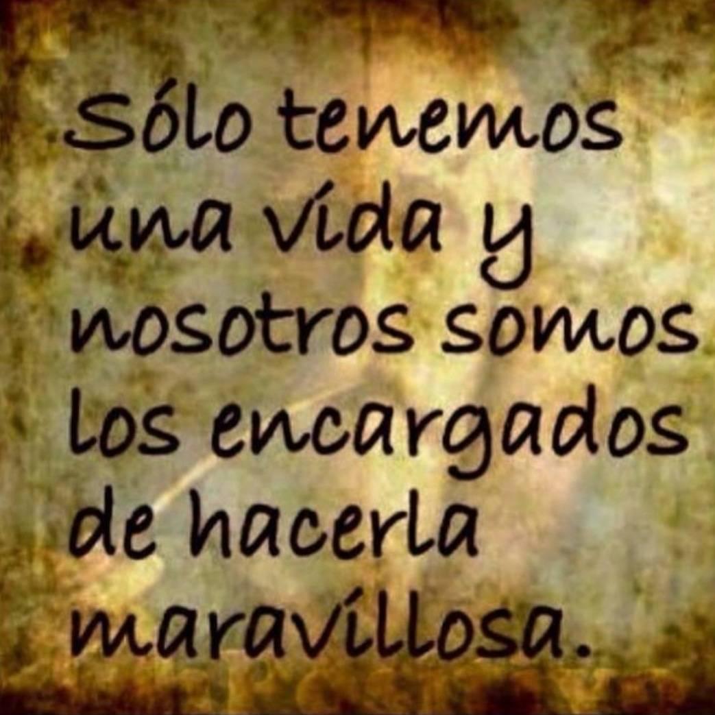 Quijotadas De Amor в твиттере Quijotadasdeamor Hazla