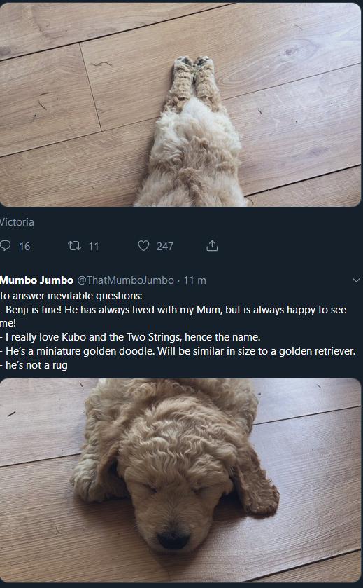 Mumbo Jumbo On Twitter This Is Hilarious