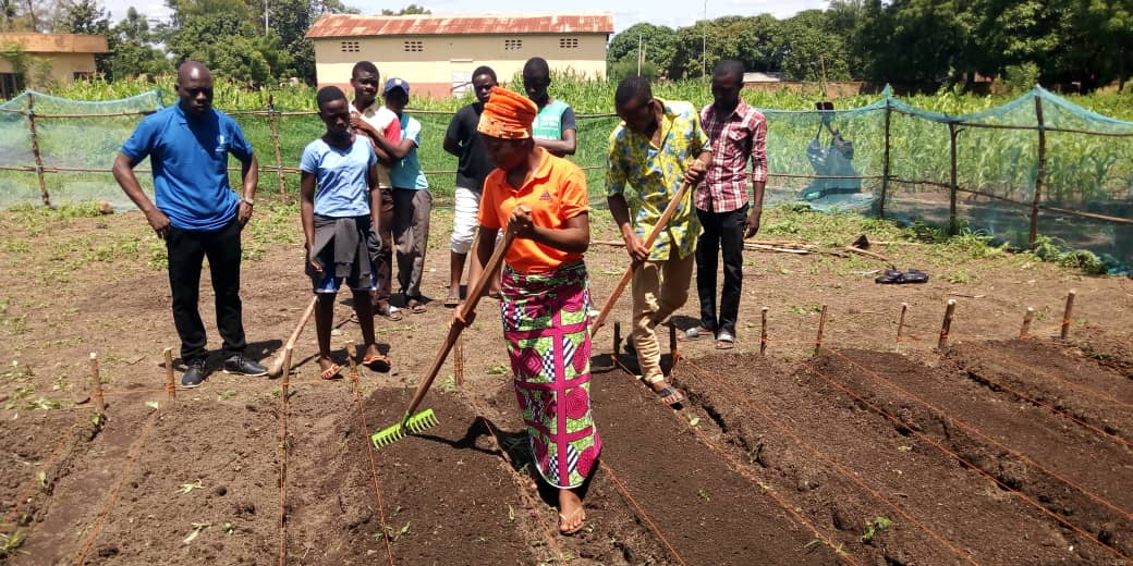 SHES GREAT Benin PILOT CAMP FOLLOW-UP PROJECT Some schools have choosen to implement #agriculture project. They got materials and are following training to build their #School garden #Steam #wasexo @IREXintl @WashFellowship @StateDept @USEmbassyBenin