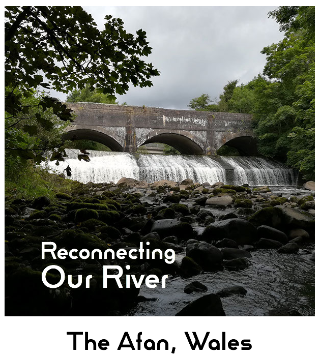 Join the world first ever complete river walk and mapping project, combining citizen science, eDNA and our Barrier Tracker App @AMBERtools and help us reconnect our rivers. They critically need it.  https://reconnectingourriver.org/  A project led by us @SwanseaUni