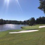Image for the Tweet beginning: As a PGA TOUR golf