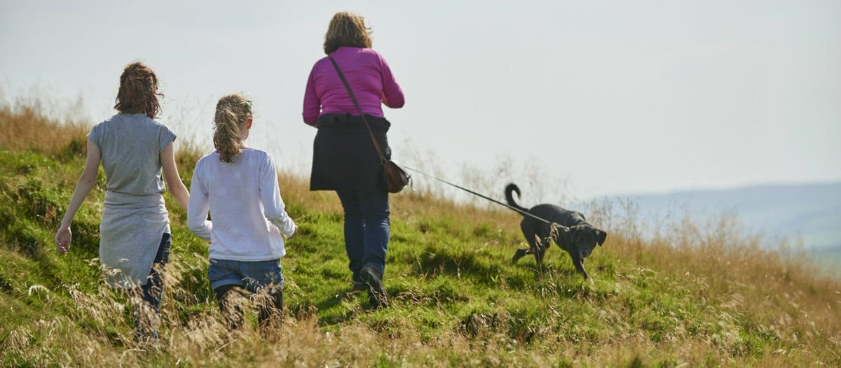 #holiday Dog Walks - Check out these amazing #Cornish #Dog Walks. #Exercise and fresh air is a great combo for the #mind and body. If your a local or a #visitor, check out these great dog walks in Cornwall. @nationaltrust https://buff.ly/2JAoJZO