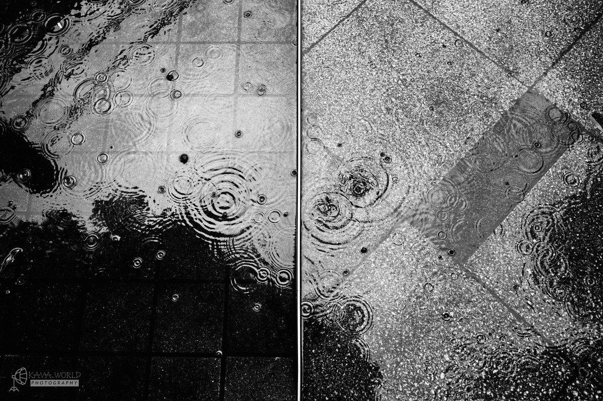 雨だれぽったん  #monochrome #モノクロ布教委員会 #スナップ