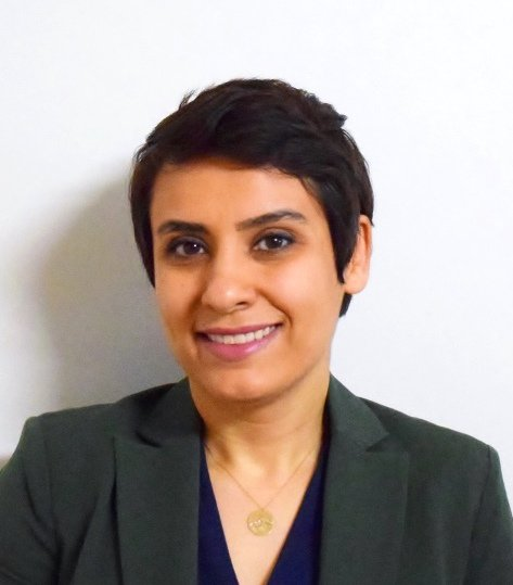 Excited Maryam H. Mofrad is starting in our research group this week! Maryam comes to @BMI_WesternU following a PhD @PittEngineering at the University of Pittsburgh. Awesome to see new researchers moving into computational neuroscience. #compneuro @Brains_CAN <br>http://pic.twitter.com/gb5LnWbVR1