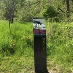 When you hike in Shinrin Yoku Interpretive Trail @cityofmarkham, do you notice those cool signages made by @ForwardSign?