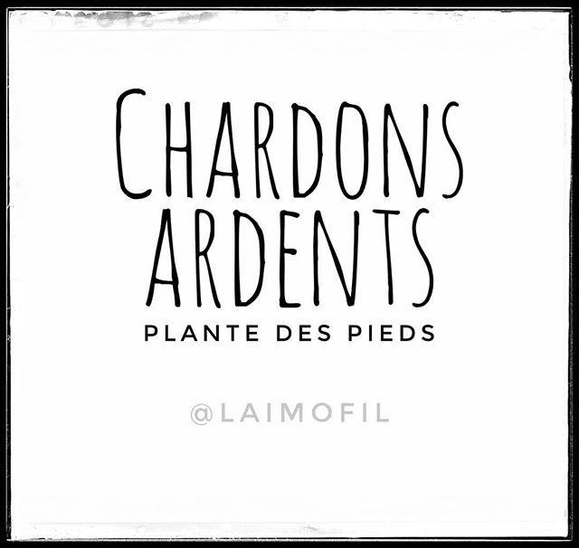 Chardons ardents, plante des pieds  #laimofil #visualart #quote #humour #rire #doublesens #apeupres #noiretblanc #jeudemots #litteRature #français #langue #orthographe #grammaire #chardon #charbon #ardent #plante #pied https://ift.tt/2lkLGqn