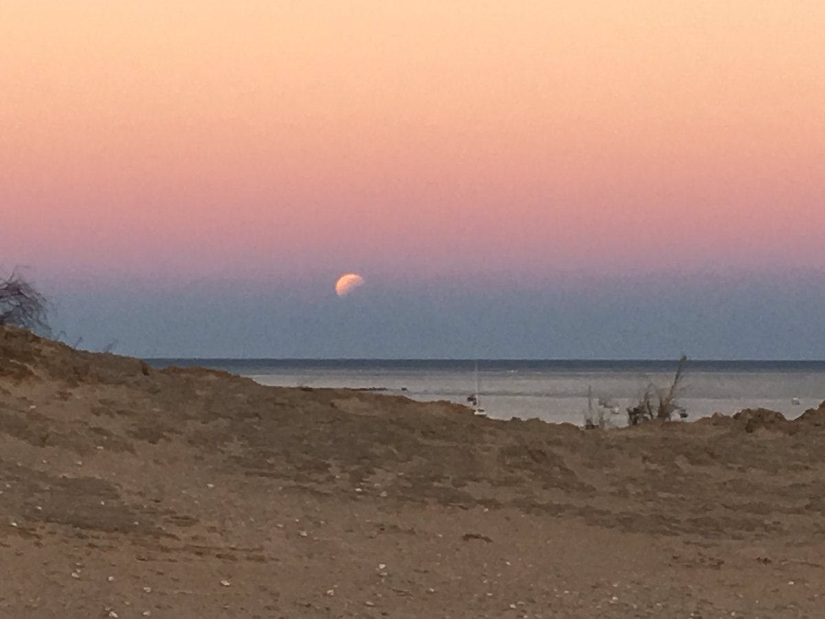 The dark layer near the horizon is the shadow of the earth projected onto the sky. The eclipsed part of the moon is in the same shadow. Seeing the eclipsed moon sitting on the edge of the earth shadow in the sky, is the story.  #StargazingABC #ABCScience #SpaceGandalf – at Gantheaume Point Beach