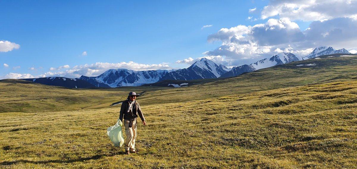 Алтай Таван Богд руу аялагчид их цувдаг болж. 7 сарын 12-ны өдөр 70 гаруй жийп тоологдож. Хог их хаяжээ. Тэр оркууд буянаа барж яваагаа ойлгохгүй л бн. Боломжоороо түүлээ. Уул ус байгаль бурханаа цэвэрлэж яваа надад буян хурж ажил үйлс амьдрал өөдрөг л явж бн.  #ХоггүйМНГБайгаль https://t.co/C1YqtG8d5I