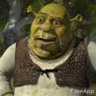 Google: Shrek in 2019