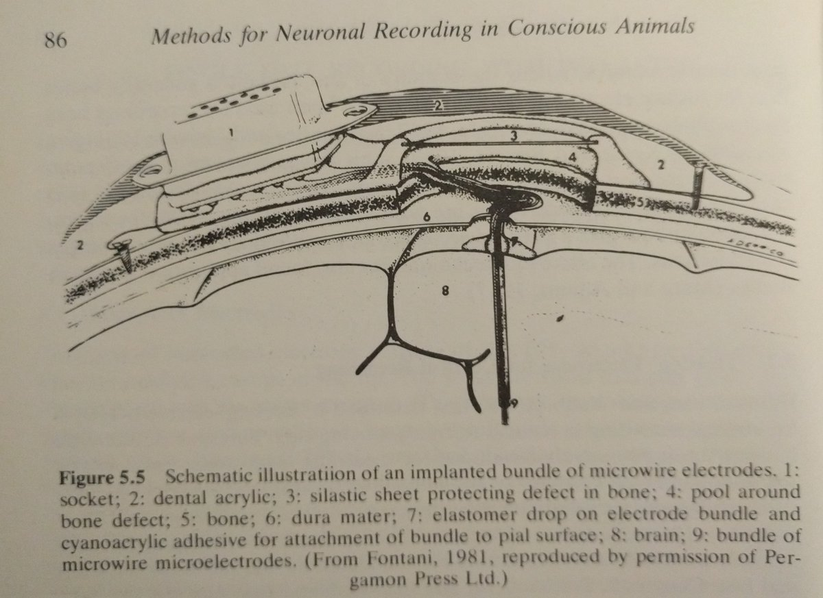 So...  I have a collection of old neuroscience books.   #Neuralink thing reminded me of this one, 6~8 of 25 micron (about the same as Neuralink's) fairly flexible electrodes. Glued together for insertion (glue eventually dissolves).  from 1981. $TSLA $TSLAQ<br>http://pic.twitter.com/NgSTtKJ59R