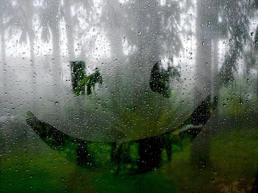 Картинки прикольные, доброе утро картинки с дождем летним