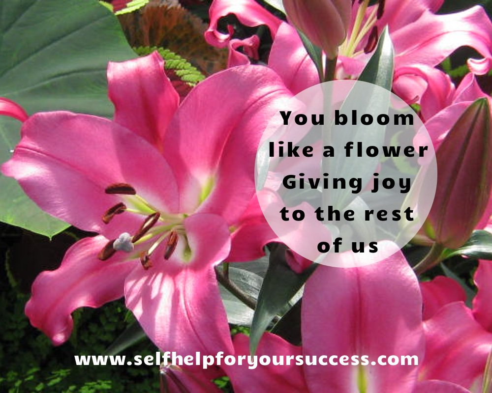 Bloom like the flower you are #success  #selfhelp