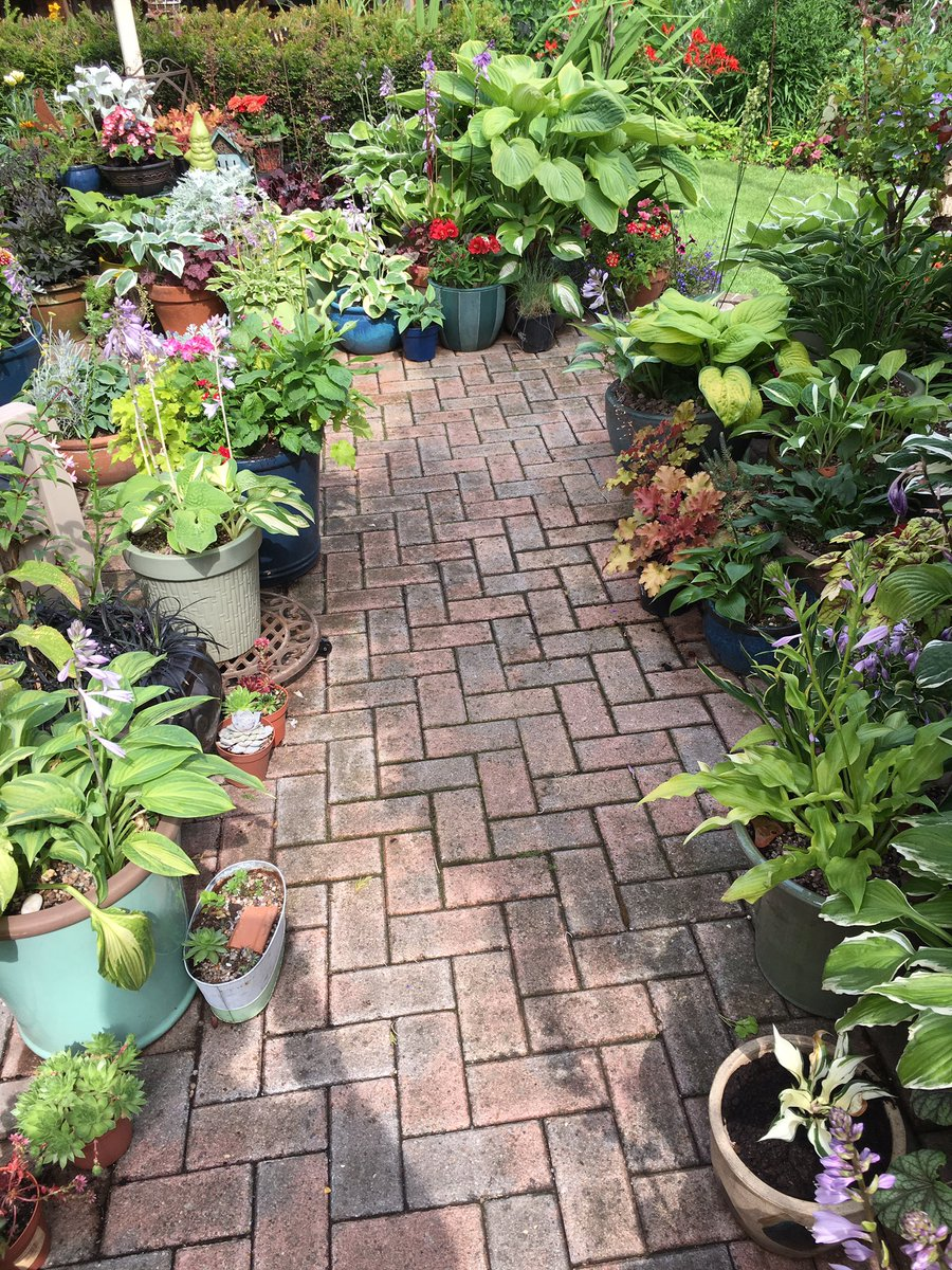 Another hot blazing day #Lincolnshire  spent 2hrs watering the back garden still front to do later on #evening my fault to have so many plants <br>http://pic.twitter.com/7f8Q8TNJIX