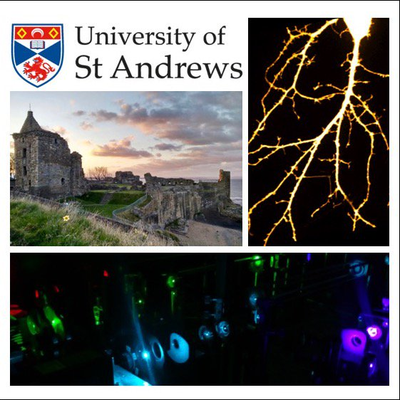 We have fully funded PhD and postdoc positions at @univofstandrews to do research in #dementia using super-resolution microscopy. Get in touch if you're interested! @StAndrewsBSRC    https:// synergy.st-andrews.ac.uk/research/phd-s tudy/phd-study-projects/phd-study-bsrc-projects/  …    https://www. vacancies.st-andrews.ac.uk/Vacancies/W/67 64/0/239175/889/research-fellow-testing-the-glymphatic-hypothesis-at-the-nanoscale-ar2170ras  … <br>http://pic.twitter.com/tRVgGsZ7wu